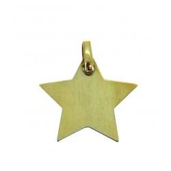 Médaille étoile simple